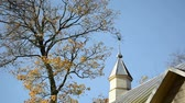 smell : old rural wooden church tower with cross and colorful autumn trees move in wind on background of blue sky.