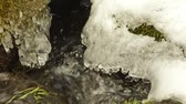 kamie�� : closeup of creek stream flow between mossy ground and stones covered with melting snow in spring.