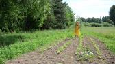 dress : Barefoot farmer lady in yellow dress and hat work in garden with hoe between vegetable plants.