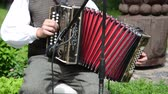 accordionist : JUKNENAI, LITHUANIA - JUNE 01: Accordionist man in traditional clothes play rural folk music with accordion in rural party on June 09, 2013 in Juknenai, Lithuania.