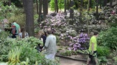 relax : KAIRENAI, LITHUANIA - MAY 24, 2014: Visitors people admire colorful rhododendron blooms flower plants in summer botanical garden on May 24, 2014 in Kairenai, Lithuania. Stock Footage