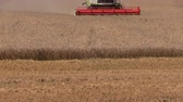 krajina : SIRVINTOS, LITHUANIA - AUGUST 15, 2014: Agricultural combine thrash harvest rye field on August 15, 2014 in Sirvintos, Lithuania. Cloudy day. Static shot on Canon XA25. Full HD 1080p. Tripod.
