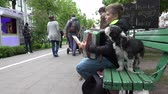 accordionist : VILNIUS, LITHUANIA - MAY 16: young boy musician play with accordion sit on bench together dog on May 16, 2015 in Vilnius, Lithuania. 4K UHD video clip. Annual music street day.