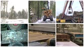 corner : Timber and lumber industry. Tree cut and transport in forest. Floor parquet wood board production in factory. Montage of video clips collage. Split screen. White round corner frame. Full HD 1080p.