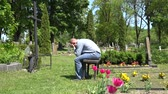 shrink : Stressed man sit shrink on bench near mother lover grave in cemetery. Flowers move in wind. Static shot. 4K