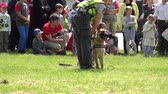 cão de pastor : VILNIUS, LITHUANIA - MAY 31,2015: policeman cop show trained dog obedience for people audience in public park on May 31, 2015 in Vilnius, Lithuania. Zoom out shot. 4K