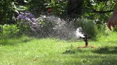 waterhose : Male farmer hands plug water hose to special watering equipment tool sprinkler and water starts to spray on flowers and lawn in summertime garden. Static shot. 4K Stock Footage