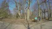 pram : Attractive mother woman with baby in buggy sit on bench near trees in spring park. Healthy leisure in fresh air. Wide angle shot. 4K UHD.