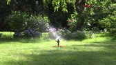 tubos : man attach garden hose to the grass sprinkler. Lawn sprinkler spray water over green grass in summertime. 4K UHD video clip.
