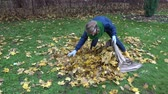 otthonos : woman stuffing dry leaves into material bag sack in autumn garden. Static shot. Stock mozgókép