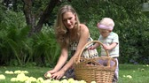 pomáhá : Cute baby helps his young smiling mother picking windfall apples fruits to basket in garden. 4K