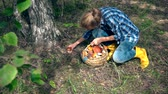 leccinum : Woman with yellow gumboots kneeling and picking boletus mushroom