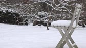 quiet : Plastic chair covered with snow in garden and snoflakes snow fall on background Stock Footage