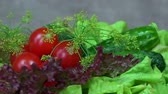 counterclockwise : Tomato, cucumber, lettuce and dill vegetables. turntable anticlockwise Stock Footage
