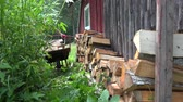 man bring with wheelbarrow  wood and unload on home wall. 4K