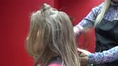 Female barber hands trimming customer blond hair tips with scissors. 4K Wideo