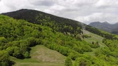 Drone above green forest against mountains and the sky. Aerial view of spring forest tree Стоковые видеозаписи