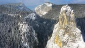 Aerial view of huge rocks in winter, Frozen trees and white rocks in mountain winter scene.