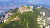 Rocks and forest summer landscape, aerial view of summer mountain