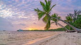 雄大な : Time lapse of beautiful sunrise over ocean beach in Dominican Republic