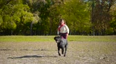 short haired : girl running with black labrador dog at autumn park