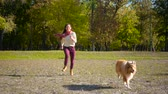 sheepdog : girl running with collie dog at autumn park Stock Footage