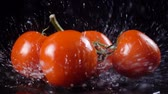 Falling red tomatoes with water splash, slow motion