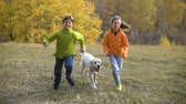 Two kids running with golden retriever at field Vídeos
