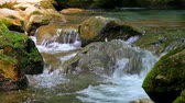 river : Scenic view of small waterfall in summer forest Stock Footage