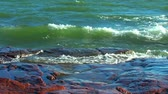 windy : Waves and rocks Stock Footage