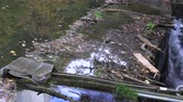 polluting : Garbage gathered at the river crossing, neckar Stock Footage