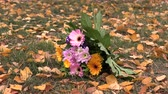 adornar : A bouquet of flowers lies on the yellow foliage.