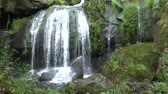 inteiro : Triberg waterfalls in the Black Forest
