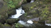 hiking trail : Triberg waterfalls in the Black Forest