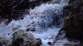 pedregulho : SLOW MOTION: flowing water over stones in mountines river