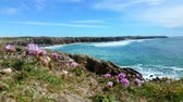 brittany : View of the cliff of Wild Coast Brittany France
