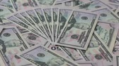 wealth : Fifty dollar banknotes background Stock Footage