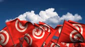 tunisian flag : Waving Tunisian Flags (seamless & alpha channel) Stock Footage
