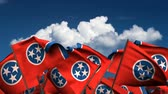 единение : Waving Tennessee State Flags seamless  alpha channel