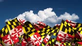 единение : Waving Maryland State Flags (seamless & alpha channel)