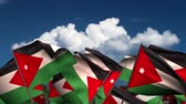 jordanian : Waving Jordanian Flags (seamless & alpha channel) Stock Footage