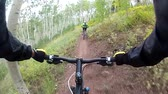 POV to mountain biker riding thrilling single-track forested  Wasatch Crest Trail, Utah.