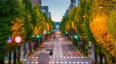 astarlı : TOKYO, JAPAN - NOVEMBER 12, 2015: Morning traffic on the ginko tree lined Koshu Kaido in the Hachioji district of Tokyo.