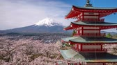 Mt. Fuji, Japan and Pagoda in springtime.