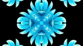vivid wall : ornamental blooming flower kaleidoscope moving pattern animation background - New quality holiday shape colorful universal motion dynamic animated joyful cool nice music video footage