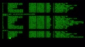 source code : encrypted fast long scrolling programming security hacking code data flow stream on green display new quality numbers letters coding techno joyful video 4k stock footage