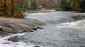 autumn : Small rapids and colorful autumn forest at Oxtongue river, Muskoka, Canada