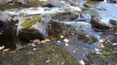 barna : Close up view of a stony riverbed and silver stream near Emsdale town, Ontario, Canada
