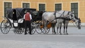 postroj : Carriage with horses for hire in Vienna Austria