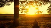 pod : Human sitting under tree. Man repose on grass in nature. Outdoors - outside. Young man meditating in half lotus - beautiful sunset as a background.